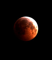 Lunar Eclipse - December 2010